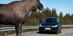 Ultragarsiniai švilpukai skirti atbaidyti laukinius gyvūnus keliuose